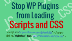 Stop plugin scripts from loading